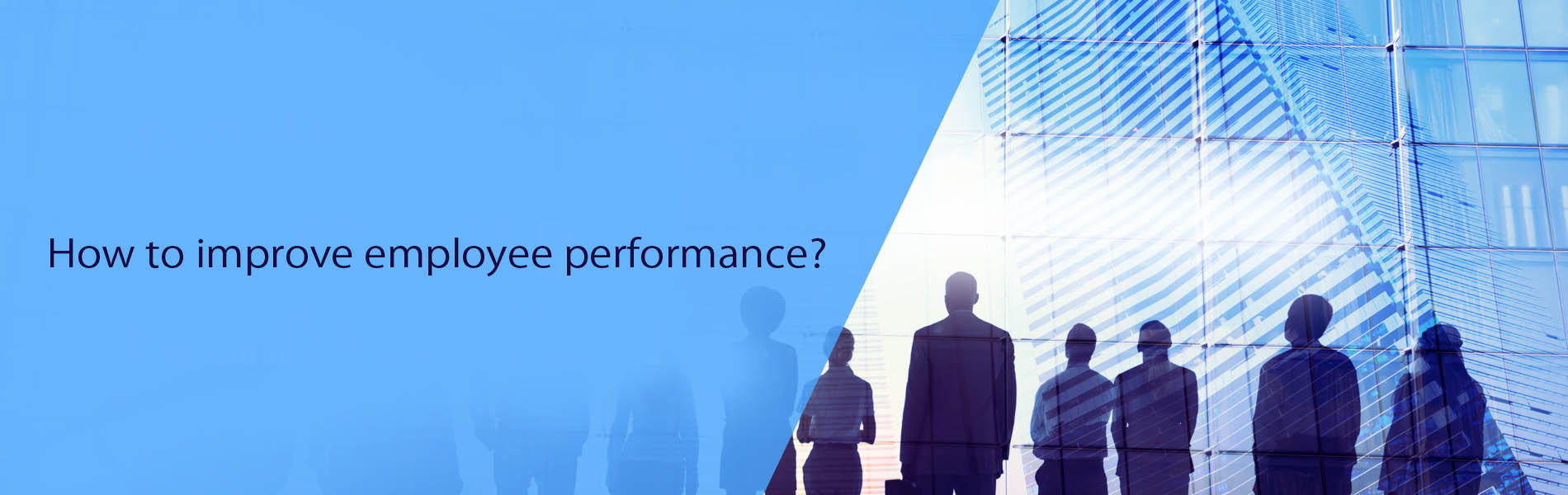How to improve employee performance?